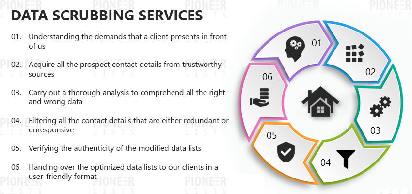 Data Scrubbing Services